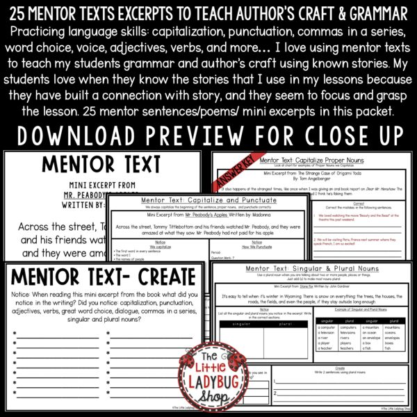 Mentor Text Writing & Grammar Practice