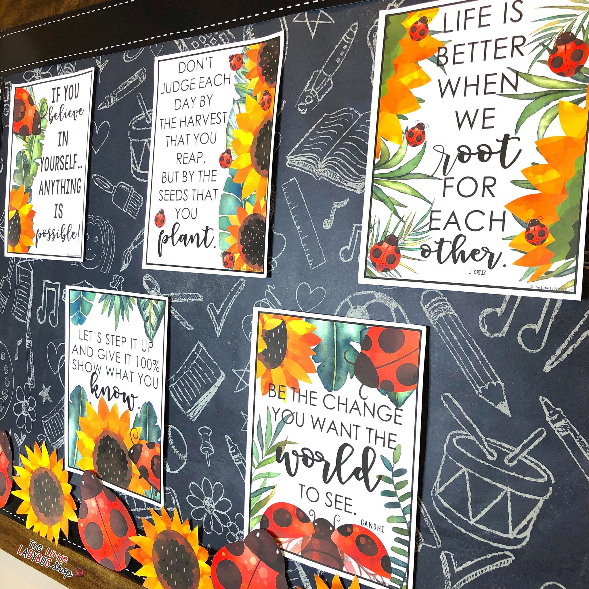 Ladybug and Sunflower Theme Bulletin Board Ideas for Teachers
